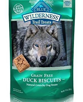 BLUE Wilderness Trail Treats GrainFree Duck Biscuits Dog Treats 10oz