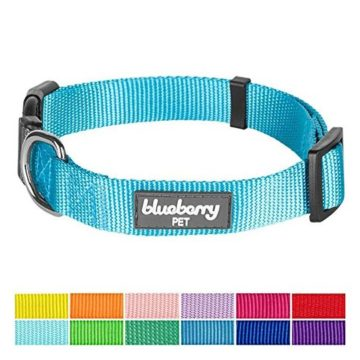 Blueberry Pet 12 Colors Classic Dog Collar Medium Turquoise Medium Neck 145″20″ Nylon Collars for Dogs