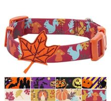 Blueberry Pet 4 Patterns Fall Fun Enchanting Squirrel Designer Dog Collar with Maple Small Neck 12″16″ Adjustable Collars for Dogs