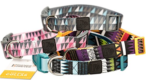 Dog Collar with Pattern designed by Friends Forever