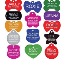 GoTags Pet ID Personalized Pet Tags for Dogs and Cats Front & Backside Engraving Various Colors and Sizes Anodized Aluminum Bone Shape Regular