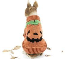 HAPEE Pet Clothes the Halloween pumpkin Cat Dog Sweater  Dog Accessories Dog Apparel,Pet Sweatshirt