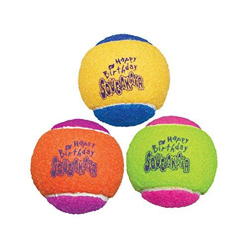 KONG Air Dog Squeakair Birthday Balls Dog Toy Medium Colors Vary