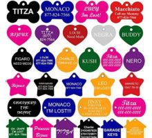 Pet ID Tags Many Shape 8 Colors Personalized Front and Back Premium Aluminum For Dogs and Cats