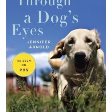 Through a Dog Eyes Understanding Our Dogs by Understanding How They See the World
