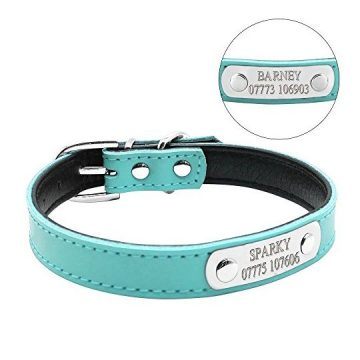 Didog Cute Leather Padded Custom Dog Collar with Engraved Nameplate ID TagFit Cats and Small Medium DogsBlueXS Size