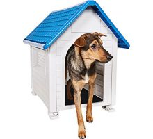 Animal Favorite Comfy Dog House Superior Quality Waterproof Resin Construction