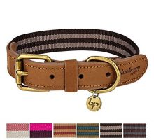 Blueberry Pet 6 Colors Vintage Staple Striped Soft Genuine Leather and Polyester Webbing Dog Collar in Chocolate and Taupe Medium Neck 15″18″ Adjustable Collars for Dogs