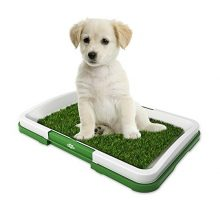 "Artificial Grass Bathroom Mat for Puppies and Small Pets Portable Potty Trainer for Indoor and Outdoor Use by Petmaker Puppy Essentials 185"" x 13"""