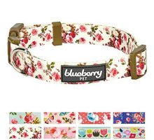 Blueberry Pet New 8 Patterns Spring Scent Inspired Pink Rose Print Ivory Dog Collar Small Neck 12″16″ Adjustable Collars for Puppies & Small Dogs