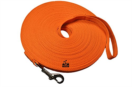 Long Dog Puppy Obedience Recall Training Agility Lead Leash  ORANGE 50' Foot  by Downtown Pet Supply