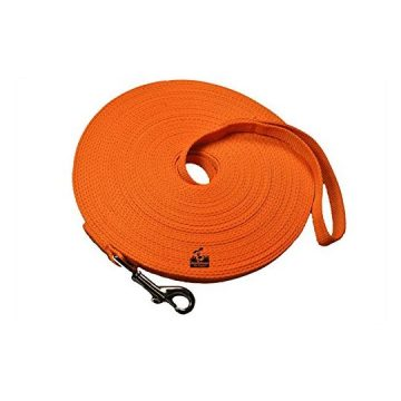 Long Dog Puppy Obedience Recall Training Agility Lead Leash  ORANGE 50′ Foot  by Downtown Pet Supply