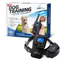 Pettech PT0Y1 Dog Training Shock Collar Rechargeable and Weather Resistant 1000 ft Range
