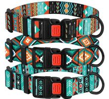 CollarDirect Nylon Dog Collar with Buckle Tribal Collar for Dogs Pattern Design Adjustable Puppy Collar Small Medium Large
