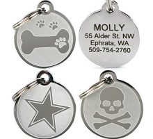 Playful Custom Engraved Pet ID Tags Solid Stainless Steel Personalized Dog & Cat Pet Identification Durable & Long Lasting Pet ID