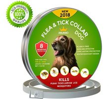 Prunno Dog Flea Collar 8 Months Protection Hypoallergenic Waterproof Tick Collar for Dogs  Adjustable Flea and Tick Prevention for Dogs  Natural Dog Flea and Tick Control
