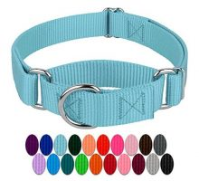 Country Brook Design Martingale Heavyduty Nylon Dog Collar  Ocean Blue  Medium