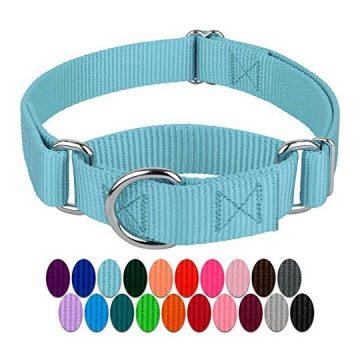 Country Brook Design Martingale Heavyduty Nylon Dog Collar  Ocean Blue  Medium