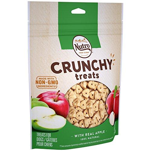 Nutro Crunchy Dog Treats Apple 16 oz Bag
