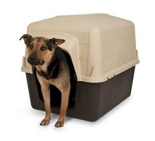 Petmate 25164 Barn III Dog House Large