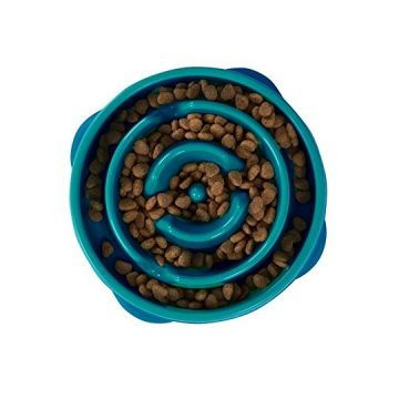 Outward Hound Fun Feeder Dog Bowl Slow Feeder Stop Bloat for Dogs Small Teal