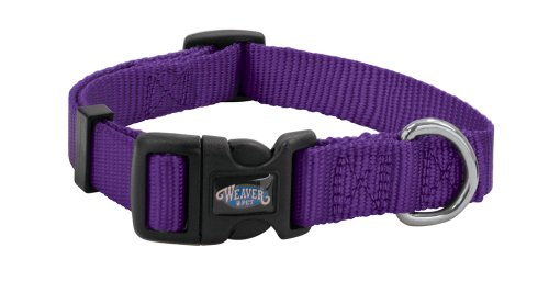 Weaver Leather Prism SnapNGo Collar Medium Purple