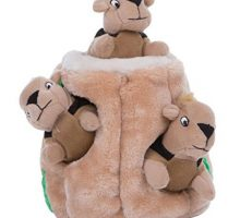 Hide a Squirrel Fun Hide and Seek Interactive Puzzle Plush Dog Toy by Outward Hound 4 Piece Jumbo
