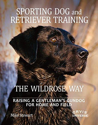 Sporting Dog and Retriever Training The Wildrose Way Raising a Gentleman Gundog for Home and Field
