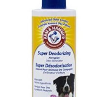 Arm & Hammer Super Deodorizing Spray for Dogs | Best Odor Eliminating Spray For All Dogs and Puppies 8 ounces Kiwi Blossom Scent