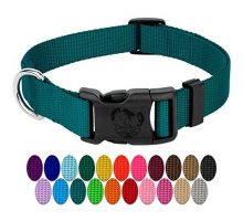 Country Brook Petz | Vibrant 21 Color Selection | Deluxe Nylon Dog Collar
