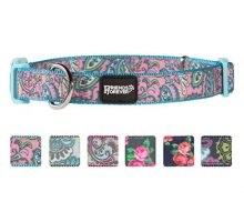 Friends Forever Dog Collar for Dogs Fashion Print Paisley Pattern Cute Puppy Collar Blue Medium 1420″