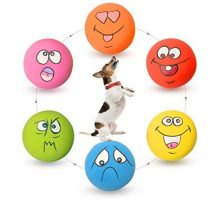 HOLYSTEED Latex Dog Squeaky Toys Rubber Soft Dog Toys Chewing Squeaky Toy Fetch Play Balls Toy for Puppy Small Medium Pets Dog cat 6PCS Set