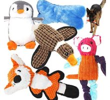 Jalousie Value Bundle Dog Toys Assortment 5 Pack Dog Plush Toys Dog Squeaky Toys Assortment