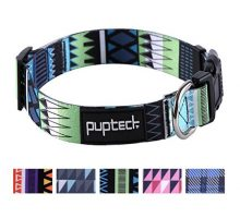 PUPTECK Adjustable Dog Collar with Pattern Designed