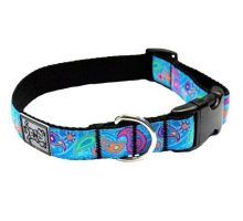 RC Pet Products 1Inch Adjustable Dog Clip Collar 12 by 20Inch Medium Tropical Paisley