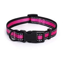 Mile High Life Dog Collar | Reflective 3M Stripe with Nylon Band