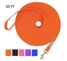 Hi Kiss Dog Puppy Obedience Recall Training Agility Lead  15ft 20ft 30ft 50ft 100ft Training Leash  Great for Training Play Camping or Backyard  Orange 50ft