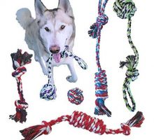 ROPE DOG TOYS FOR SMALL DOGS AND MEDIUM DOGS  BENEFITS NONPROFIT DOG RESCUE  DOG CHEW TOYS FOR SMALL AND MEDIUM BREEDS  COTTON DOG TOYS FOR BOREDOM