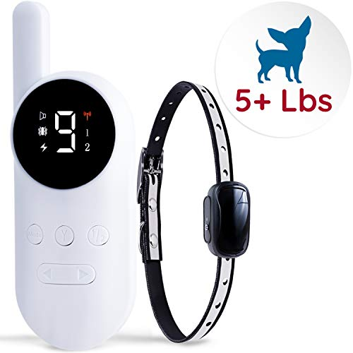 GoodBoy Mini Remote Collar for Dogs with Beep and Vibration Modes for Pet Behaviour Training  Waterproof & 1000 Feet Range  Suitable for Extra Small to Medium Dogs