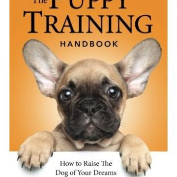 The Puppy Training Handbook How To Raise The Dog Of Your Dreams