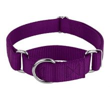 Country Brook Design  Martingale Heavyduty Nylon Dog Collar  Purple  Medium