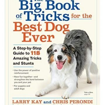 The Big Book of Tricks for the Best Dog Ever A StepbyStep Guide to 118 Amazing Tricks and Stunts
