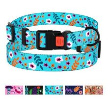 CollarDirect Floral Dog Collar Nylon Pattern Flower Print Adjustable Pet Collars for Dogs Small Medium Large Puppy