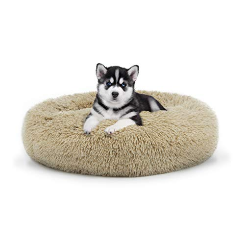 The Dog Bed Sound Sleep Donut Dog Bed Small Beige Plush Removable Cover Premium Calming Nest Bed