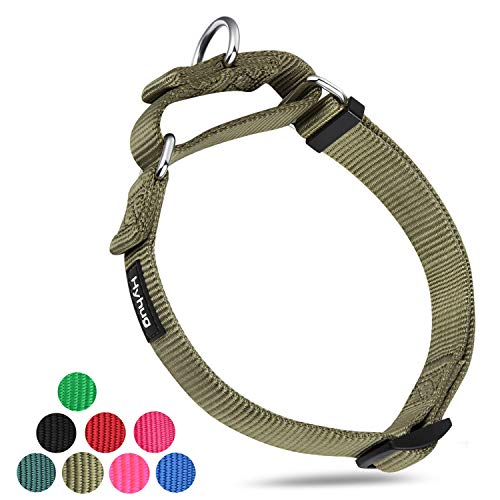 Hyhug Premium Upgraded Durable Nylon AntiEscape Martingale Dog Collar for Medium Boy and Girl Dogs Comfy and Safe  Walking Professional Training Daily Use