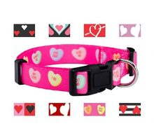 Native Pup Valentine Day Heart Dog Collar