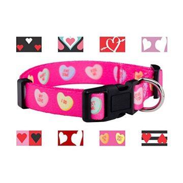 Native Pup Valentine Day Heart Dog Collar