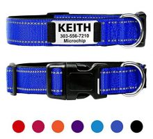 Taglory Personalized Dog Collar with Nameplate Custom Engraved Pet ID Tags No NoiseReflective Training Collars for Small Medium Large DogsNavy Blue