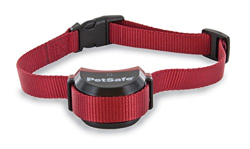 PetSafe Stubborn Dog Stay + Play Wireless Fence Receiver Collar Waterproof and Rechargeable Tone and Static Correction